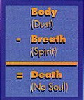 Body + Spirit = Soul